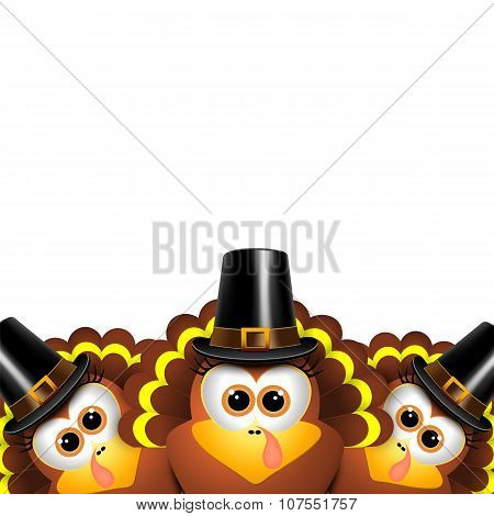 Cartoon Turkeys In A Pilgrim Outfit.