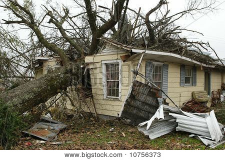 Home Destroyed By Falling Tree