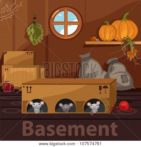 Home basement with rodents, boxes and food