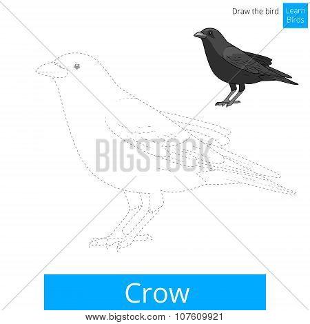 Crow bird learn to draw vector