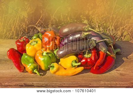 Green , yellow and red pepper, eggplants.