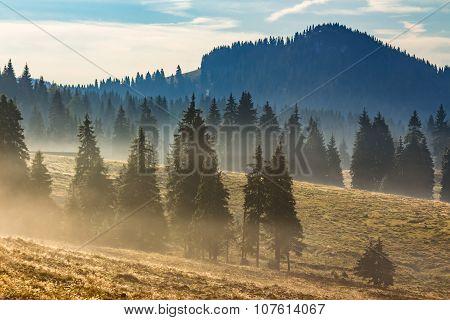 Fog On Hot Sunrise In Mountains
