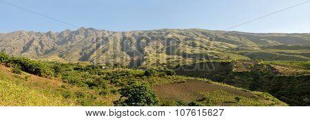 Mountain High Farm
