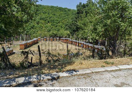 Part of farmyard with apiary at  Batkun Monastery