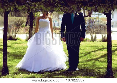 Wedding Couple, Bride And Groom Standing Together On Grass Over Tress