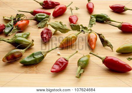 Pungent Small Pepper