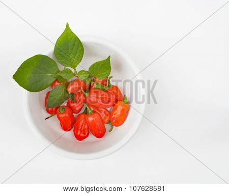 Zavory Mild Habanero Peppers in White Bowl