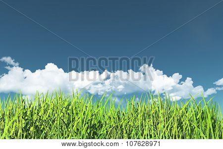 3D render of a grassy landscape