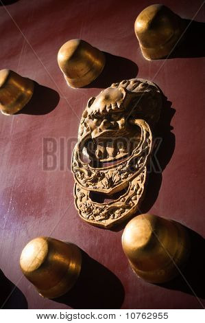 Brass Plated Lion Door Knocker