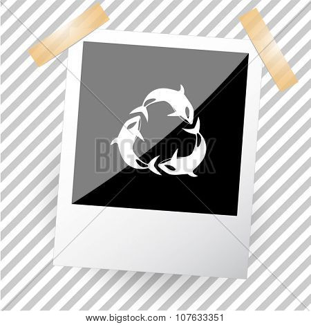 killer whale as recycling symbol. Photoframe. Vector icon.