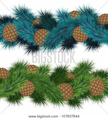 Conifers Cones In Pine Branches