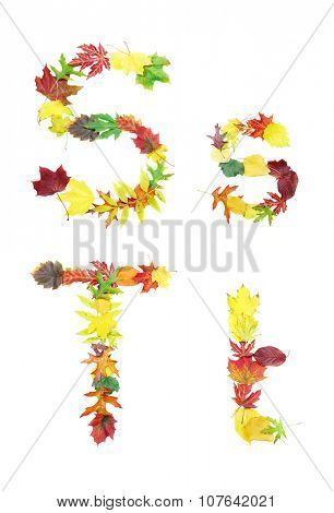 Font made of autumn leaves isolated on white. Letters s and t.