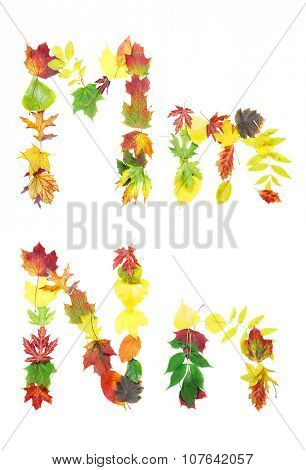 Font made of autumn leaves isolated on white. Letters m and n.