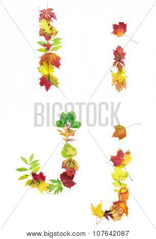 Font made of autumn leaves isolated on white. Letters i and j.
