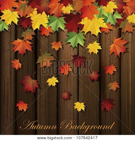 Autumn background.Vector