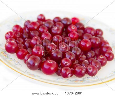Ripe cranberries on a plate