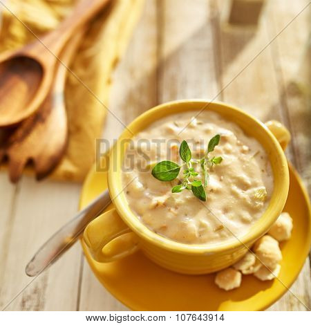 clam chowder with green herb garnish in square composition