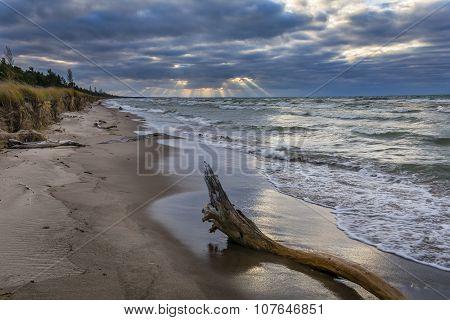 Driftwood On A Lake Huron Beach Under A Cloudy Sky