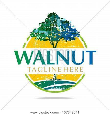 Logo Walnut