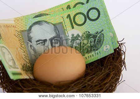 Australian Hundred Dollars in a Nest