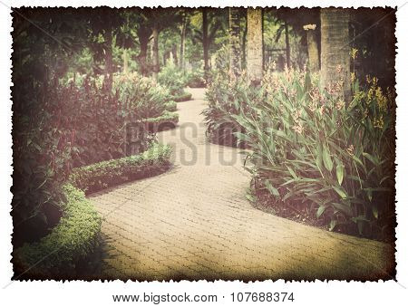 Walkway In The Garden On Old Burnt Paper Background