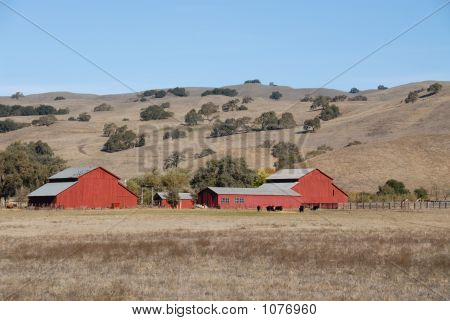 Red Barn & Brown Hills