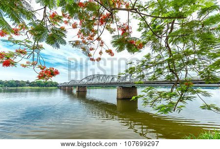 Trang Tien Bridge looming flamboyant side branches reflecting on the river