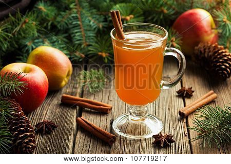 Hot apple cider traditional winter season drink with cinnamon and anise. Homemade healthy organic wa