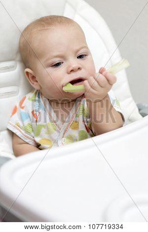 Pensive Baby Boy Biting Celery