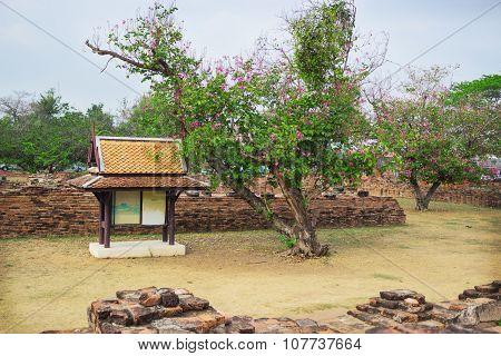 Ruins Architecture In Ayutthaya Historic Park, Thailand