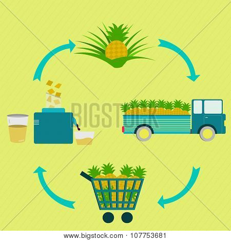 Process Of Pineapple Juice