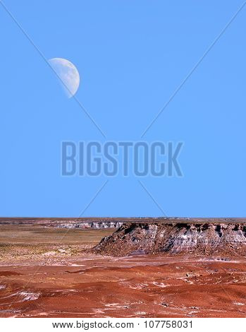 Petrified Forest And Moon