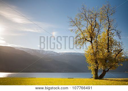 Rural Norway, Voss