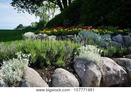 Rock Flower Garden
