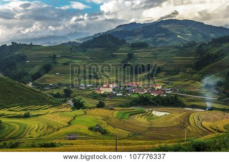 Rice fields on terraced of Mu Cang Chai YenBai Vietnam. Rice fields prepare the harvest at Northwest