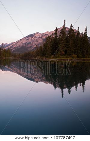 Bow river reflections