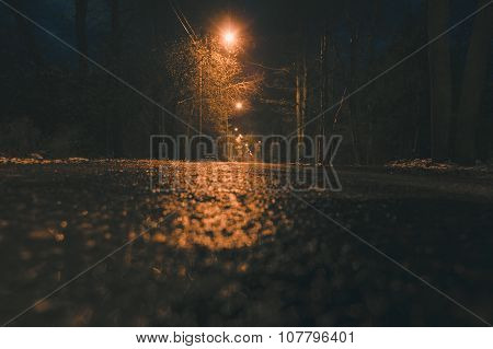 Empty Wet Asphalt Road And Lamppost Lights At Night