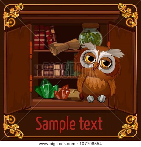 Owl sits on a bookshelf with scrolls and crystals