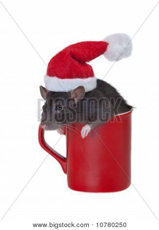 Mug Of Santa Claus
