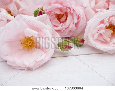 Pale Pink Roses Bouquet On The Rustic Wooden Background