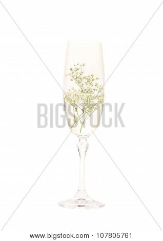 Champagne glass with water and white little flowers in white background