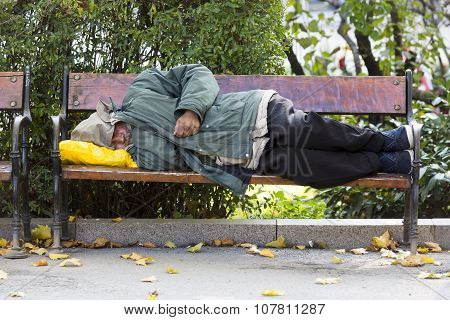 Homeless Person On A Bench