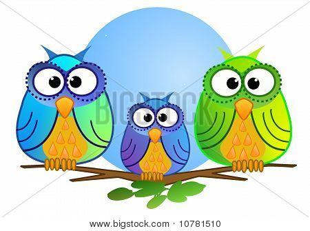 可爱多彩猫头鹰 库存照片和库存图片