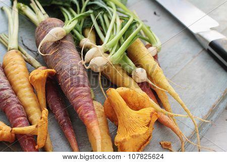 mixed Autumnal seasonal vegetables