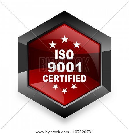 iso 9001 red hexagon 3d modern design icon on white background