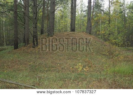 An Ancient Burial Mound