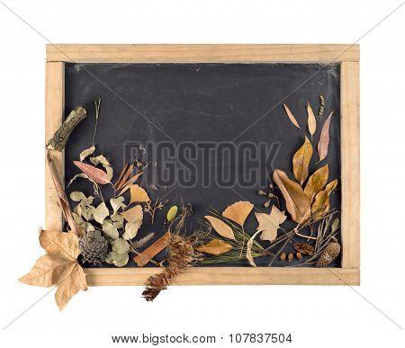 Fall Composition Blackboard Leaf Autumn Vintage