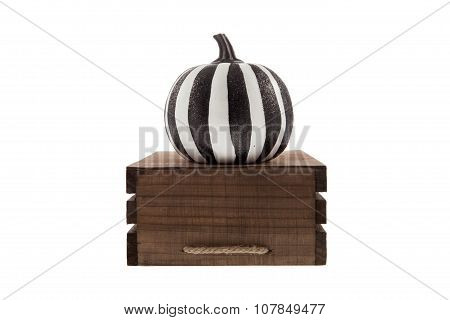 Zebra Pumpkin