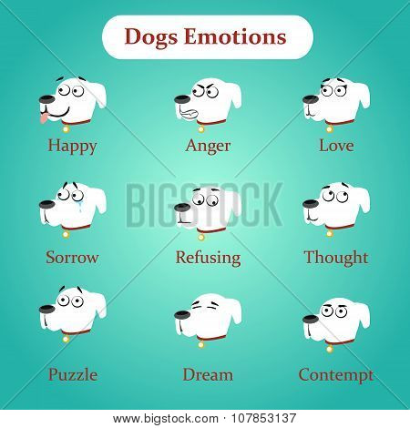 Emotions white dogs on a blue background
