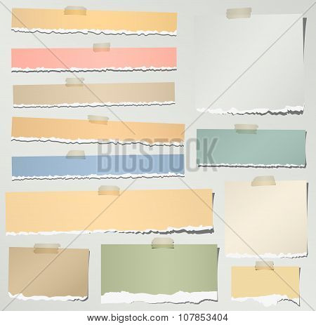 Set of various colorful torn note papers with adhesive tape on gray background